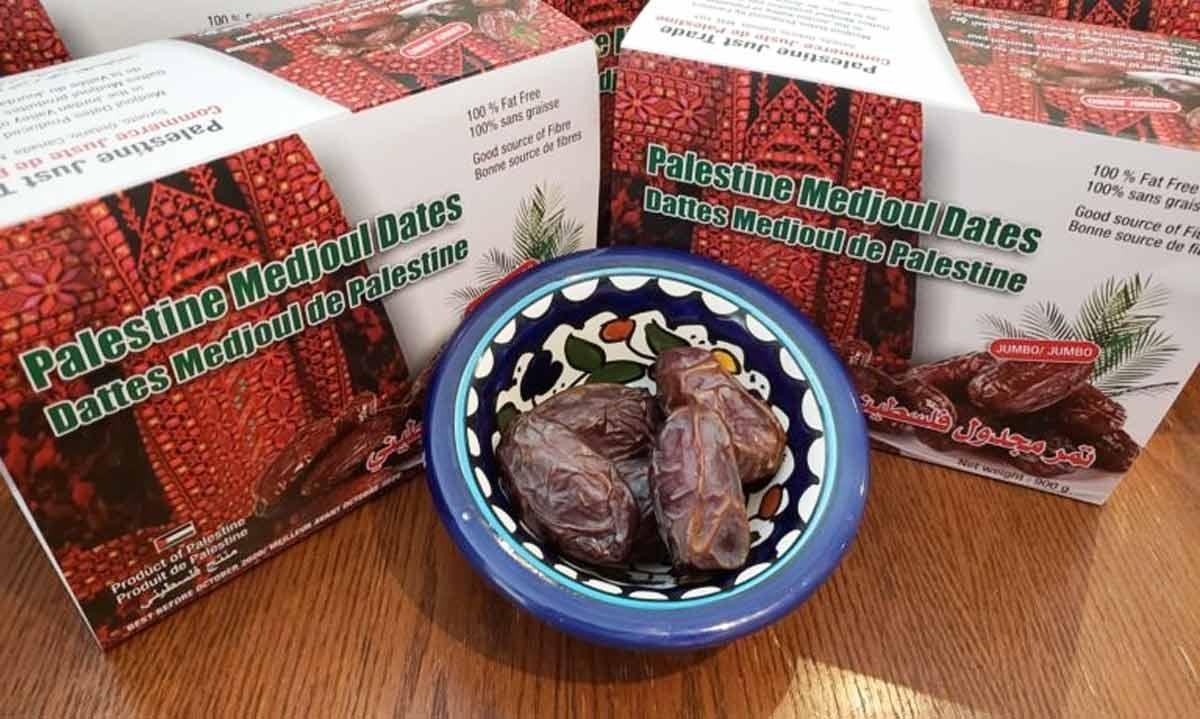 Medjool Dates from Palestine